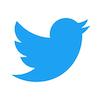 Twitter verplicht sterk wachtwoord voor accounts Amerikaanse verkiezingen
