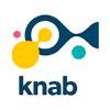 Knab mag smartphone-app voor gebruik bankrekening verplichten